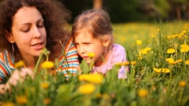 Mother and daughter talk lying on lawn with dandelions — Stock Video