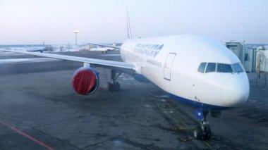 Avião fica no território do Aeroporto domodedovo — Vídeo stock
