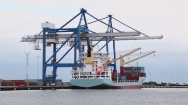 Cranes load vessel by containers in port with windmills — Stock video