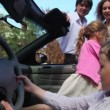 Two kids boy with girl play in cabriolet and parents stand near — Stok video