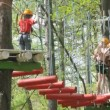 Children go on rope bridge in adventure park Panda — Stock Video