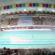 Audience looks competitions on swimming in Sports complex — Видео