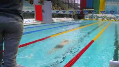 Athletes compete in pool on Championship of Russia on swimming — Stock Video