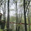 People go on rope bridge in turn in adventure park Panda — Stock Video