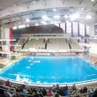 Audience leaves pool auditorium after match on water polo — Stock Video