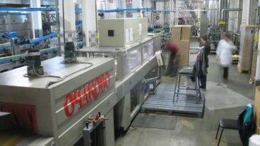 Workers watch conveyor with beer banks on beer - plant Ochakovo — Stock Video