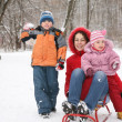 Mother with children in park at winter — Stock Photo #7438549