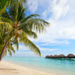 Perfect beach on Moorea - Stock Photo