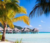 Perfect beach on Bora Bora — Stock Photo