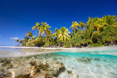 Tropical island — Stock Photo