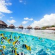 French Polynesia — Stock Photo