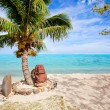 Stock Photo: Polynesistatue on beach