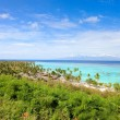 Moorea island landscape — Stock Photo