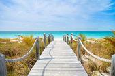 Caribbean beach — Stok fotoğraf