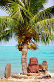 Polynesian statue under the palm — Stock Photo