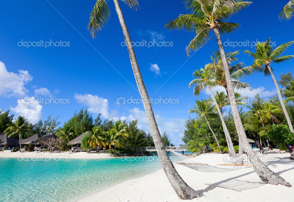 Фотообои Beautiful beach on Bora Bora