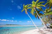 Perfect tropical beach — Stock Photo