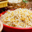 Soybean sprouts - Stock Photo