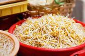 Brotos de feijão de soja — Foto Stock
