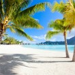 Bora Bora beach - Stock Photo