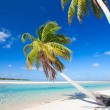 Stunning tropical beach — Stock Photo #13750304