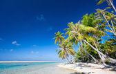 Stunning tropical beach — Foto de Stock