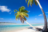 Stunning tropical beach — Stock Photo