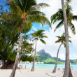 Stock Photo: Beach on Bora Bora