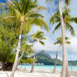 Beach on Bora Bora — Stock Photo #14734903
