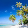 Perfect tropical beach — Stock Photo #14735587