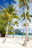 Bora bora beach — Stok fotoğraf