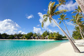 Beautiful beach on Bora Bora — Stock Photo
