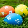 Easter eggs on a grass — Stock Photo #15337983