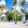 Beach on Bora Bora - Stock Photo