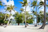 Plaża na wyspie Bora bora — Zdjęcie stockowe