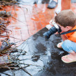 Stock Photo: Boy photographing at seafood market