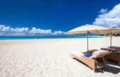 Beautiful Caribbean beach — Stockfoto