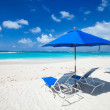 Beautiful Caribbean beach — Stock Photo #22787748