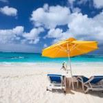 Beautiful Caribbean beach — Stock Photo #24461029