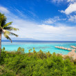 Moorea island landscape — Stock Photo #26179505