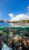 French Polynesia above and bellow water — Stock Photo