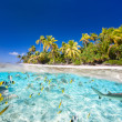 Tropical island — Stock Photo #26527553