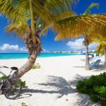 Beautiful Caribbean beach — Stock Photo #26530591
