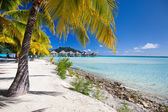 Stunning beach on Bora Bora — Stock Photo