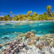 Tropical island — Stock Photo #27004761