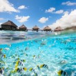 Tropical paradise — Stock Photo #30343549