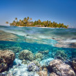 Stock Photo: Tropical island above and underwater