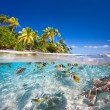 Stock Photo: Tropical island