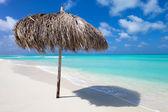 Bela praia do caribe — Foto Stock