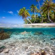Tropical island under and above water — Stock Photo #35368607
